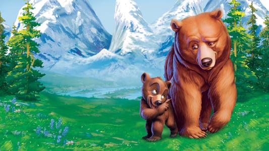 Image Frère des ours