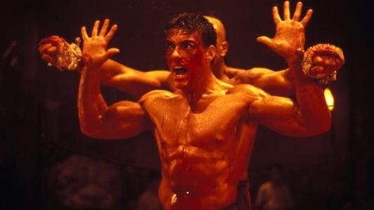 Image Kickboxer