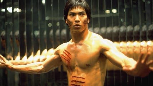 Image Dragon, l'histoire de Bruce Lee