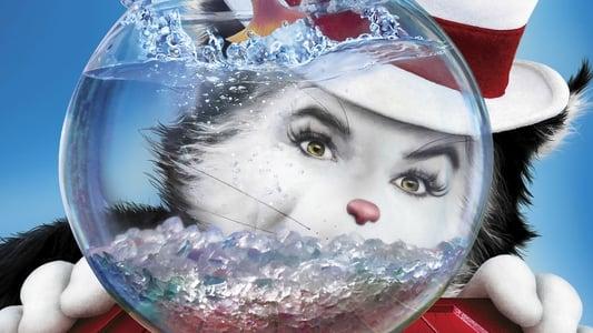 Image Le chat chapeauté