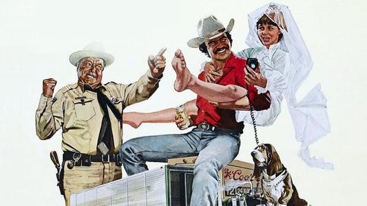 Image Cours après moi shérif