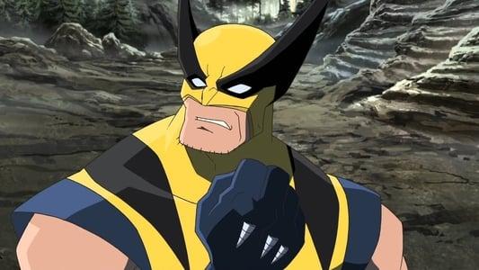 Image Hulk vs. Wolverine