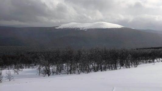 Image The Dyatlov Pass Incident