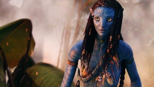 Image Capturing Avatar