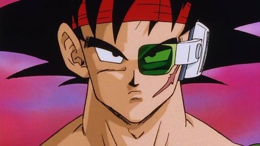 Image Dragon Ball Z - Le père de Songoku