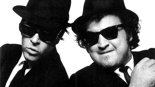 Image Les Blues Brothers