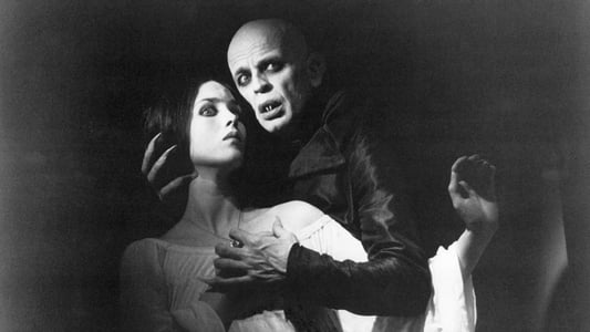 Image Nosferatu, fantôme de la nuit