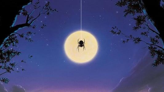 Image Arachnophobie