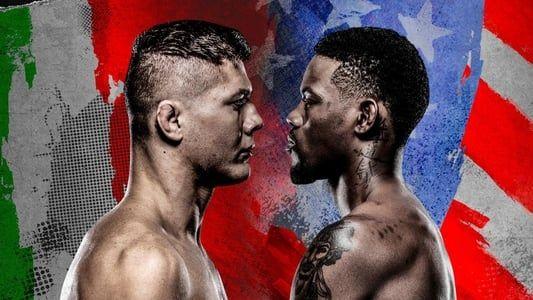 Image UFC on ABC 2: Vettori vs. Holland