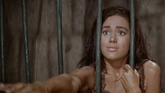 Image La Planète des singes