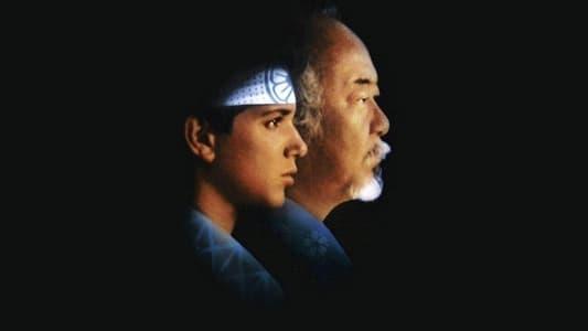 Image Karaté Kid 2