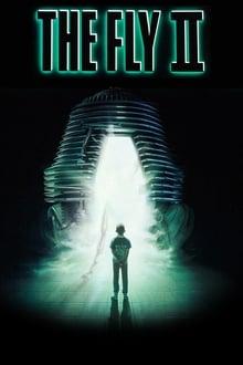 Image La Mouche 2