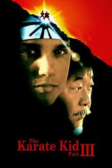 Voir Karaté Kid 3 en streaming