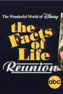 Image The Facts of Life Reunion