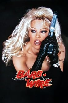 Image Barb • Wire