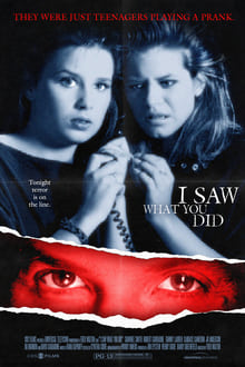 I Saw What You Did series tv