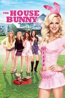 Voir Super blonde (2008) en streaming