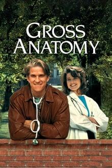 Image Cours d'anatomie