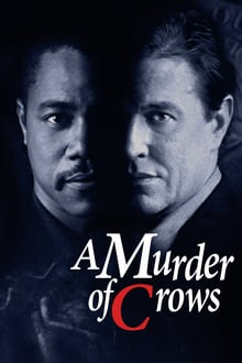 Image Murder of Crows