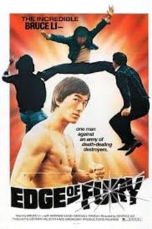 Image La fureur du kung-fu