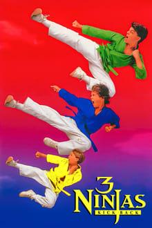Ninja Kids 2 : Les 3 Ninjas contre-attaquent series tv