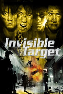 Image Invisible Target