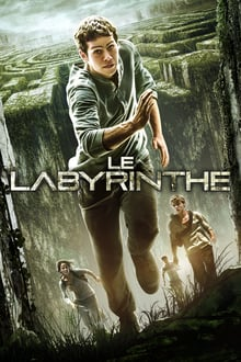 thumb Le Labyrinthe Streaming