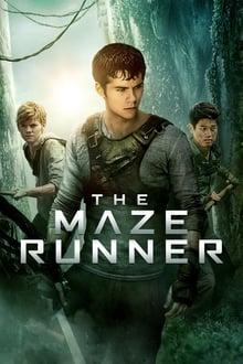 image Le Labyrinthe