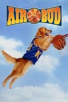 Image Air Bud : Buddy star des paniers