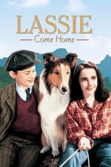 Fidèle Lassie (1943)