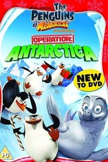 Image Les Pingouins de Madagascar : Opération : Antarctique