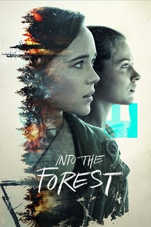 Image Into the Forest