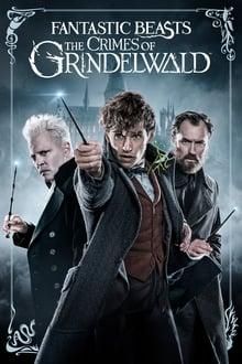 Voir Les Animaux fantastiques : Les Crimes de Grindelwald (2018) en streaming