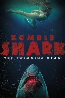 Image Zombie Shark