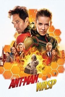 Image Ant-Man et la Guêpe 2018