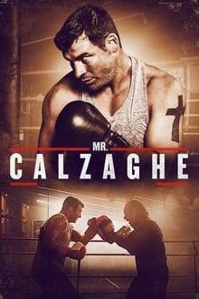 Image L'histoire de l'ascension du champion du monde de boxe invaincu Joe Calzaghe.