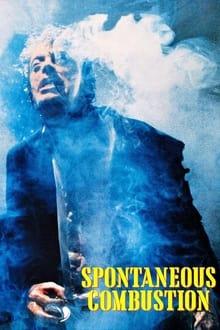 Image Combustion spontanée