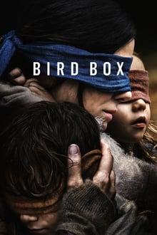 Image Bird Box
