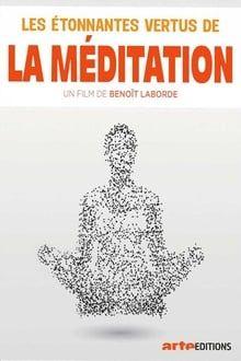 Image Les étonnantes vertus de la méditation