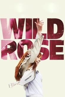 Image Wild Rose