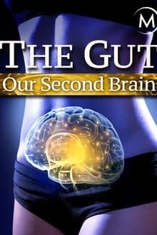 Image Le ventre, notre deuxième cerveau