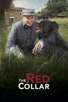 Voir Le Collier rouge (2018) en streaming