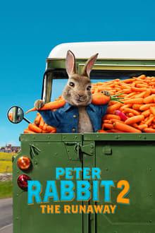 Image Pierre Lapin 2 : Panique en ville