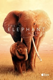 Image The Elephant Mother
