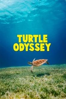 Image Turtle Odyssey