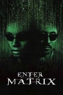 Making 'Enter the Matrix' series tv