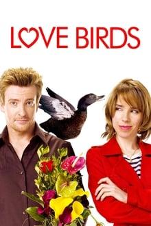 Image Love Birds