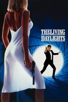 Voir Tuer n'est pas jouer (1987) en streaming