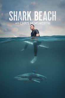 image Shark Beach with Chris Hemsworth