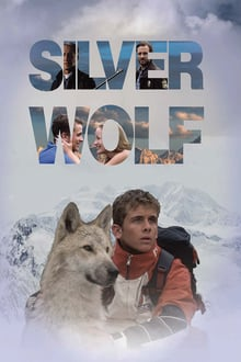 Image Silver Wolf